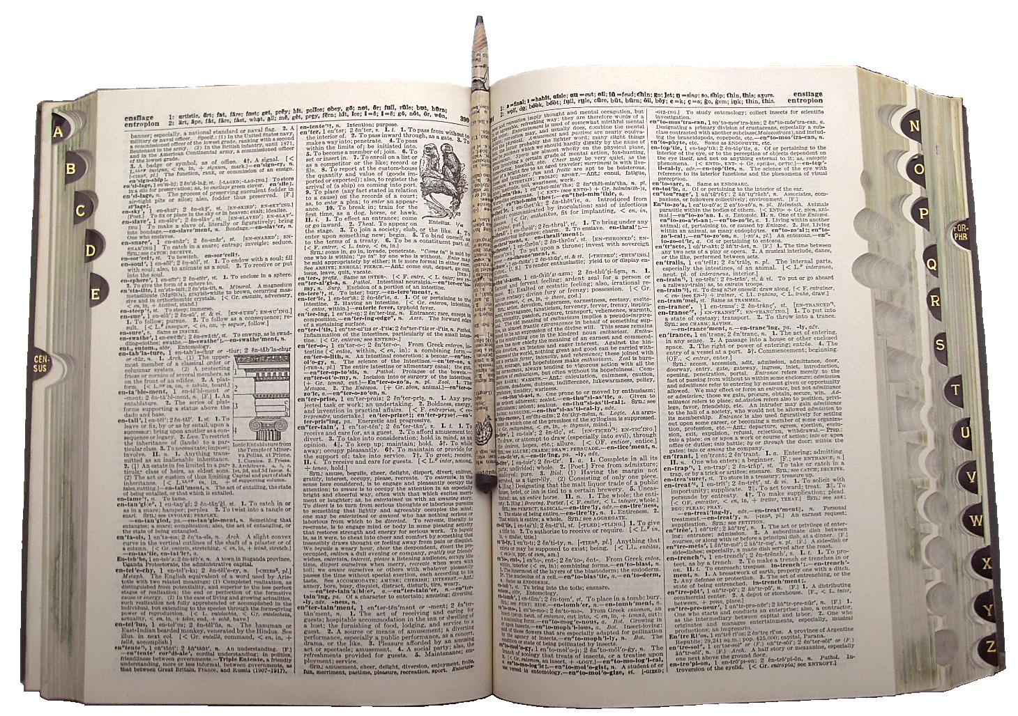 dictionary-pencil.jpg