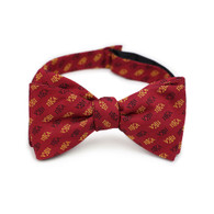 Pi Kappa Alpha PIKE Fraternity Silk Bow Tie- Self-Tie- Greek Letters