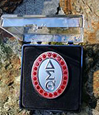 Delta Sigma Theta Sorority 22 Ruby Rhinestone Pin