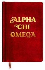Alpha Chi Omega Sorority Velvet Notebook