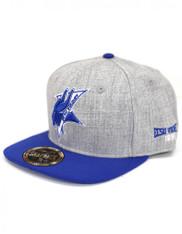Elizabeth City State University Snapback Hat- Gray