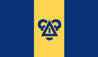 Delta Upsilon Fraternity Flag