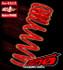 Tanabe DF210 Lowering Springs - Scion tC 11+ - Scion tC/Scion tC 2011+/Suspension/Lowering Springs