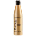 Salerm Cosmetics - Golden Blonde Color Shampoo 250ml