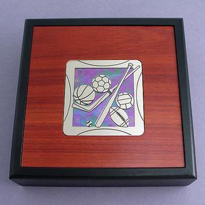 Sports Valet Box