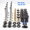 NEW  WR OEM Replacement Valve Kit 39/35 and 39/32