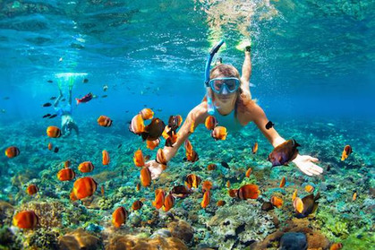 Snorkeling in Key West.