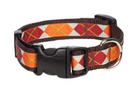 Pumpkin Spice Dog Collar - Pumpkin Argyle