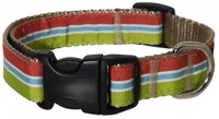 Plato Dog Collar- Stripe