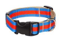 Prep School Dog Collar-Brody