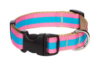 Prep School Dog Collar- Lucy