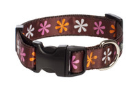 Sorbet Dog Collar-Flower Power