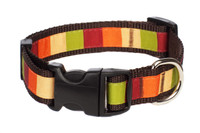 Pumpkin Spice Dog Collar - Pumpkin Block