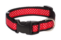 Pembroke Polka Dot Dog Collar-Red