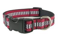 GameCocks-05 Collar