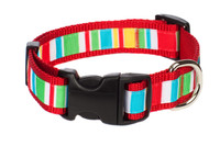 Bomb Pop Dog Collar - Push Up Stripe