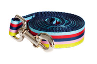Bubble Gum Dog Leash - Yummy Gummy on Blue