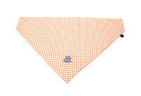 Southern Charm Collection - Checks Orange - PawKerchief