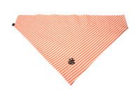 Southern Charm Collection - Orange Stripe - PawKerchief