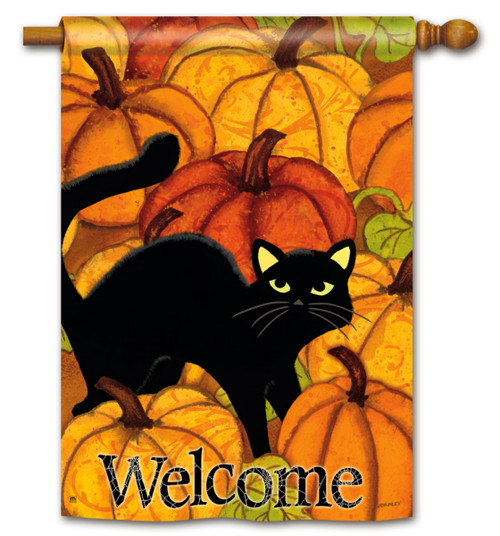 Pumpkin Patch Cat Halloween House Flag - 2 Sided Message