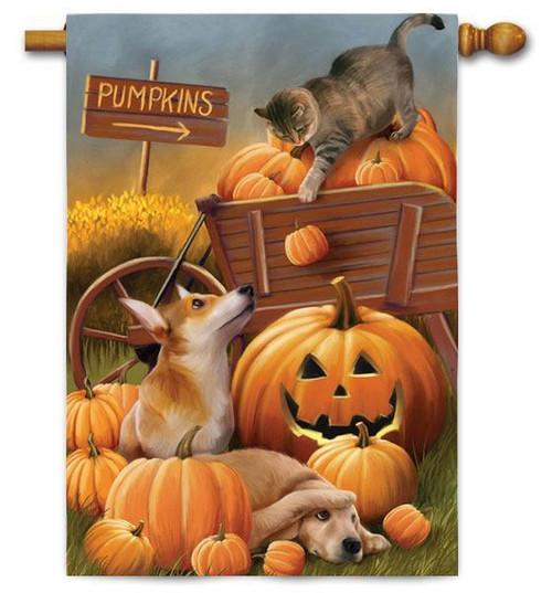Fall or Halloween House Flag