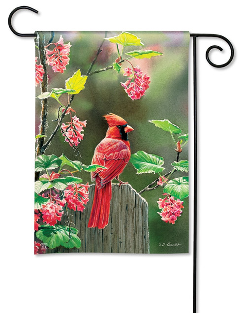 "Cardinal Beauty Summer Garden Flag - 12.5"" x 18"" - BreezeArt"