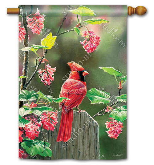 "Cardinal Beauty Summer House Flag - 28"" x 40"" - BreezeArt"
