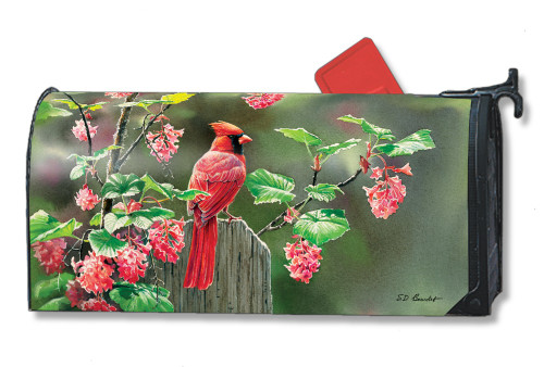 Cardinal Beauty Magnetic Mailbox Cover