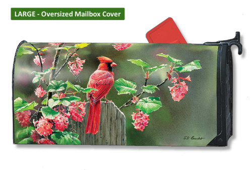 Cardinal Beauty LARGE Magnetic Mailbox Cover
