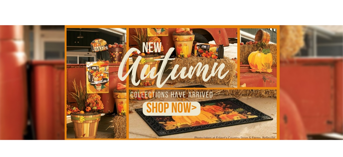 Shop New Fall and Autumn Decor Collections