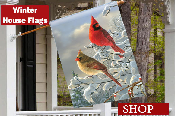 winter-outdoor-house-flags-for-your-home.jpg