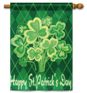 St. Pat's House Flag by Evergreen