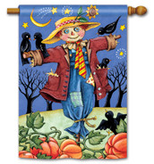 BreezeArt Outdoor House Flag Moonlight Scarecrow