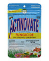 NATURAL INDUSTRIES - ACTINOVATE 2 OZ