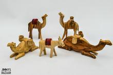 Camels (selection set 1)