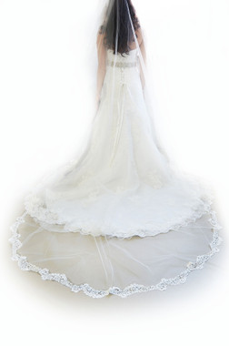 "Ansonia Bridal Veil Style 730 - Cathedral 108"" Long - Venise Lace Edge"