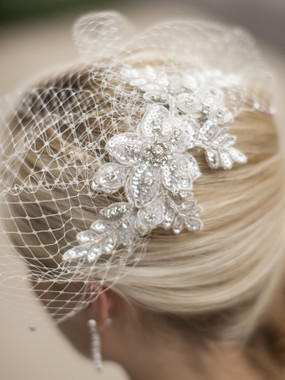 Mariell Bridals 4103V Bold Crystal Ivory Lace Applique - French Net Birdcage Blusher