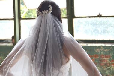 "Elena Designs Wedding Veil Style E1167S - Cut Edge Embroidered edge veil with pearls - 35""/50"" X 108″"