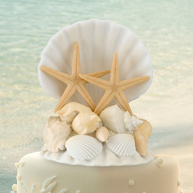 Seashell Caketop by Lillian Rose