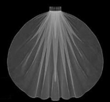 "LC Bridal Style V682-120 - One Tier Fingertip Hemmed (Pencil, Finished) Edge Veil - 36"" Long"