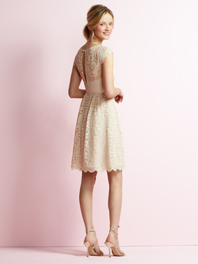 JY Jenny Yoo Bridesmaid Dress Style JY509
