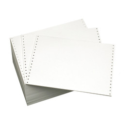 "12"" x 8-1/2"" 18# Blank, Regular Perf - IBM Spec Paper, Continuous Computer Paper, 3000 sheets, 3905"