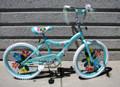 """CB-202LGR 20"""" GIRLS BICYCLE"""