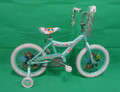 "CB-162LGR  16"" GIRLS BICYCLE"