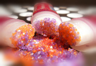 Orange Lavender Sugar Lip Scrub