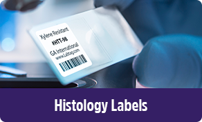 video-categ-histology-1-.png