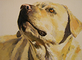Demo & Dialogue: Dog Portraits in Watercolor with Pam McLaughlin, Saturday, May 5, Denver Store