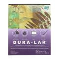 Grafix Dura-Lar Pad .005mm Clear 14in x 17in