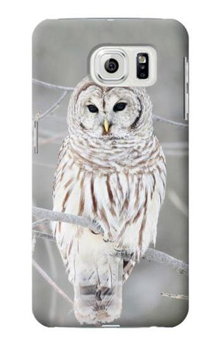 S1566 Snowy Owl White Owl Case For Samsung Galaxy S7 Edge