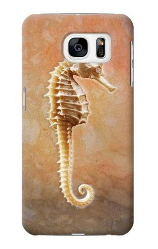 S2674 Seahorse Skeleton Fossil Case For Samsung Galaxy S7